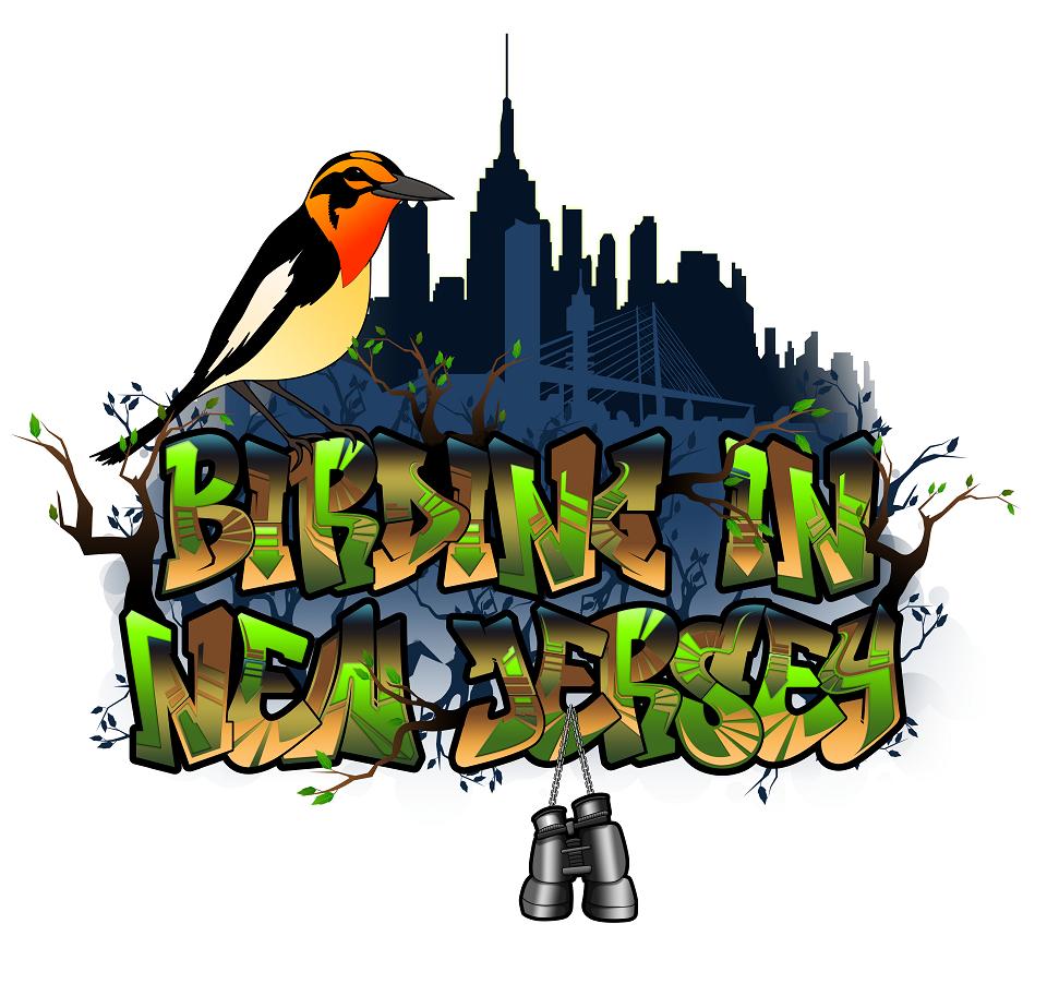 Birding In New Jersey